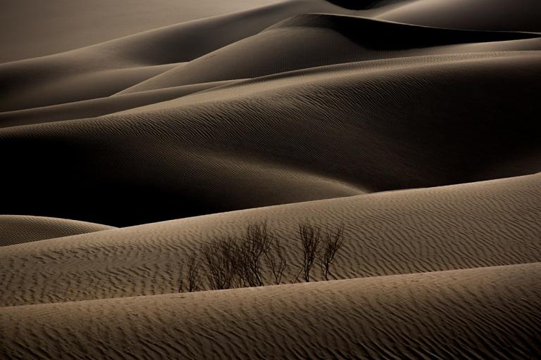 Dehghan_Amin_Desert05-2