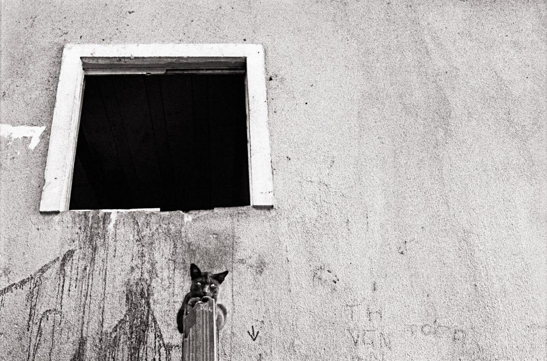 GiorgioNegroAllAboutPhoto19-1