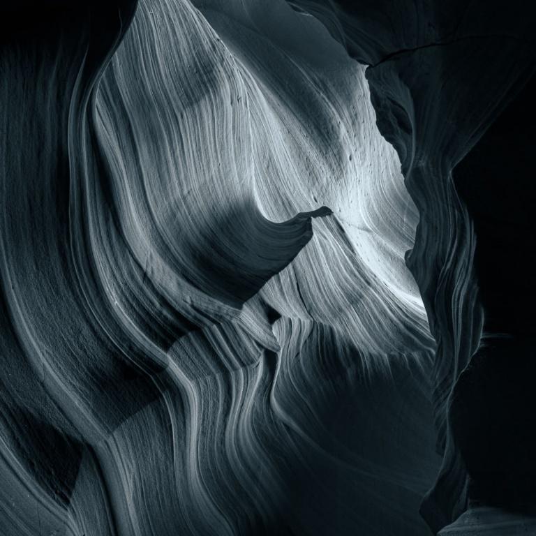 Chiaroscuro by Nature