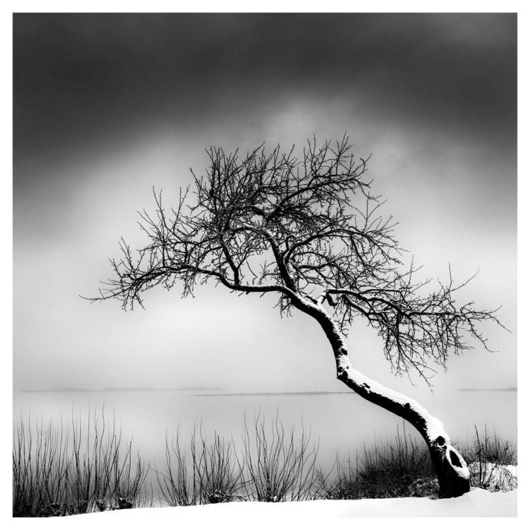 I like the picture, J'aime le minimaliste