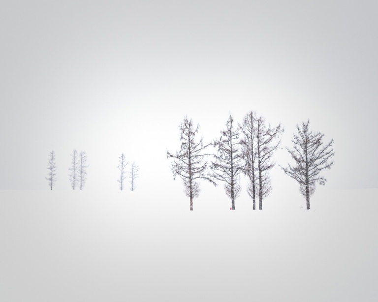 Winter 2020 Hokkaido