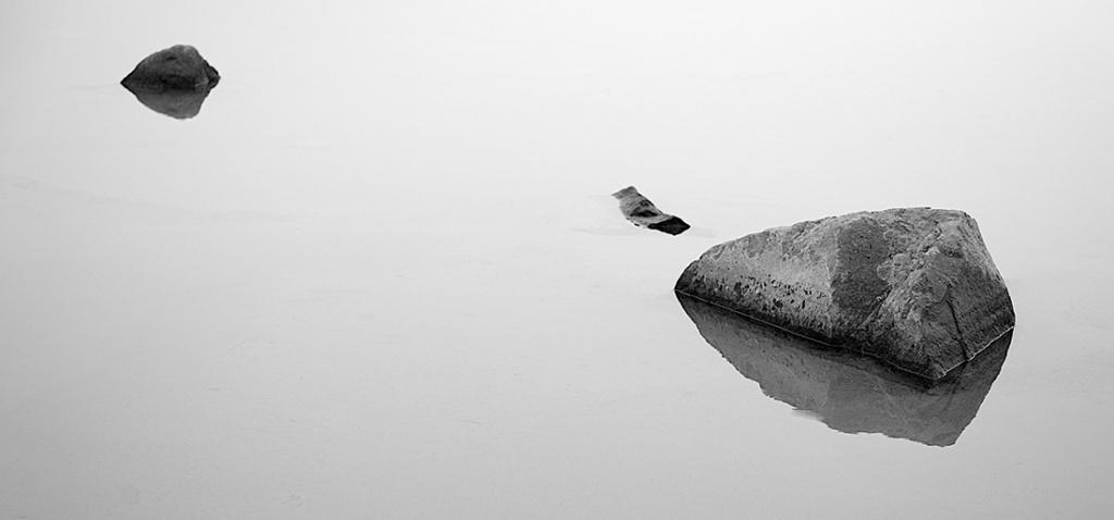 Pond Zen Scene