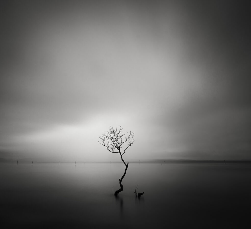Isolation,