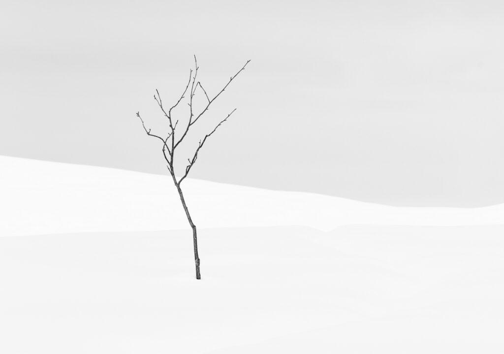 Souls inside the winter