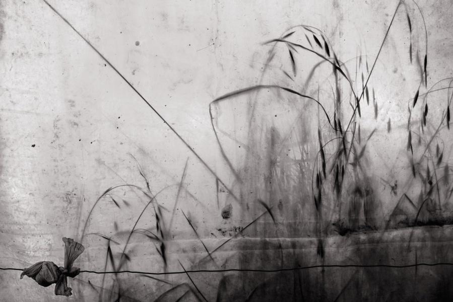 GiorgioNegroAllAboutPhoto19-5