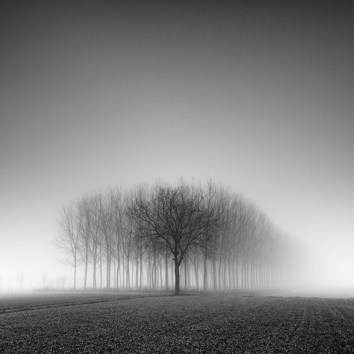 Pierre_Pellegrini_Me_and_the_others