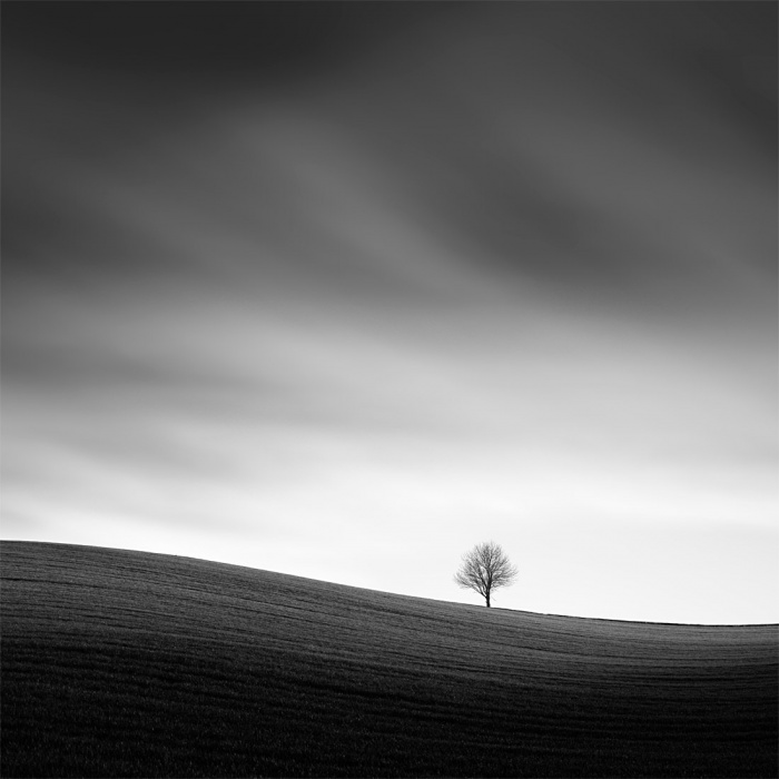 Tomas_Tison_Alone_in_fields
