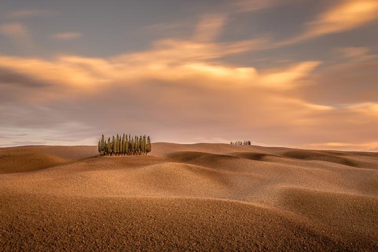 Tuscany_Ryszard-Lomnicki
