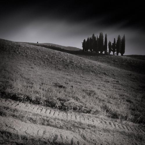 roberto_cenci_toscana-4